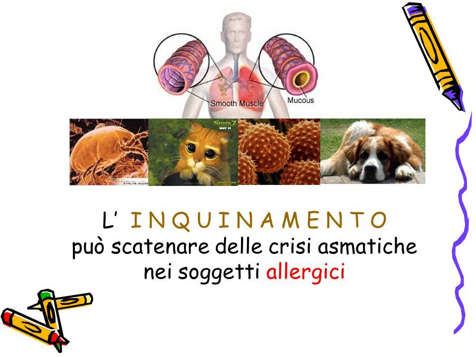 L' I N Q U I N A M E N T O può scatenare delle crisi asmatiche nei soggetti allergici