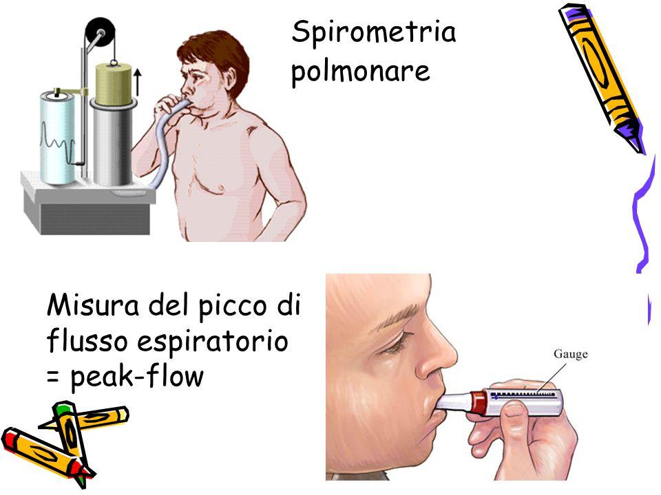 Spirometria polmonare Misura del picco di flusso espiratorio = peak-flow