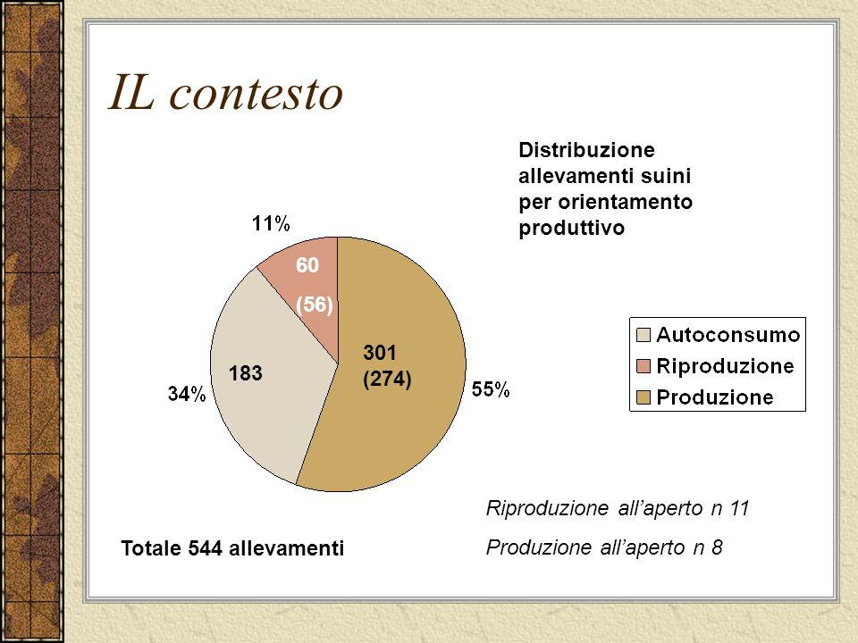 IL contesto 183 60 (56) 301 (274) Distribuzione allevamenti suini per orientamento produttivo Totale 544 allevamenti Riproduzione all'aperto n 11 Produzione all'aperto n 8