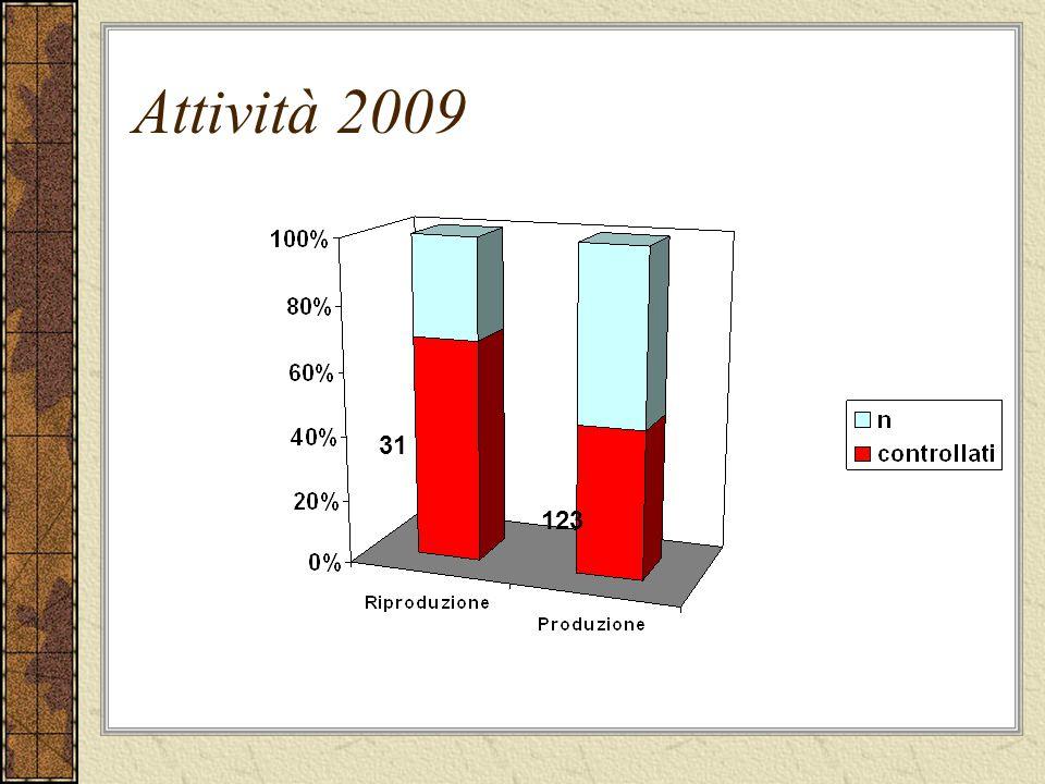 Attività 2009 31 123