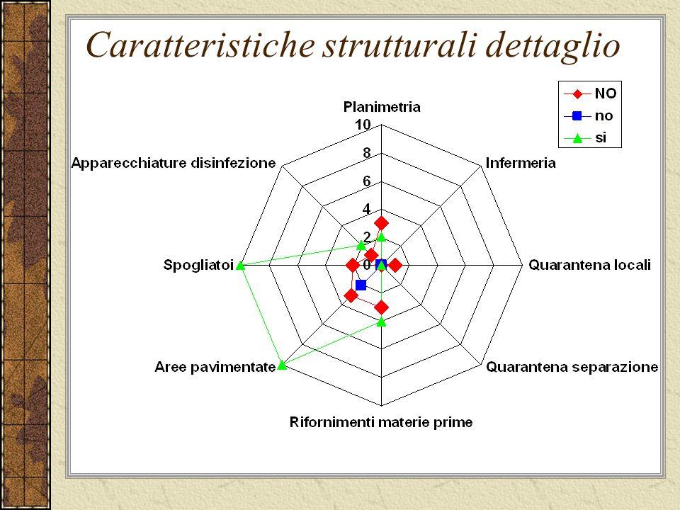 Caratteristiche strutturali dettaglio