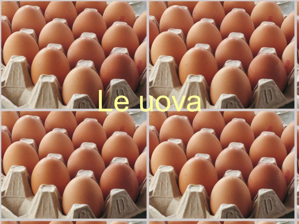 Ovi-caprini L'indicazione ALLEVATO IN ITALIA può essere utilizzata solo se: L'animale ha trascorso almeno gli ultimi 6 mesi in Italia; L'animale viene macellato sotto i 6 mesi ed ha trascorso l'intero periodo di allevamento in Italia.