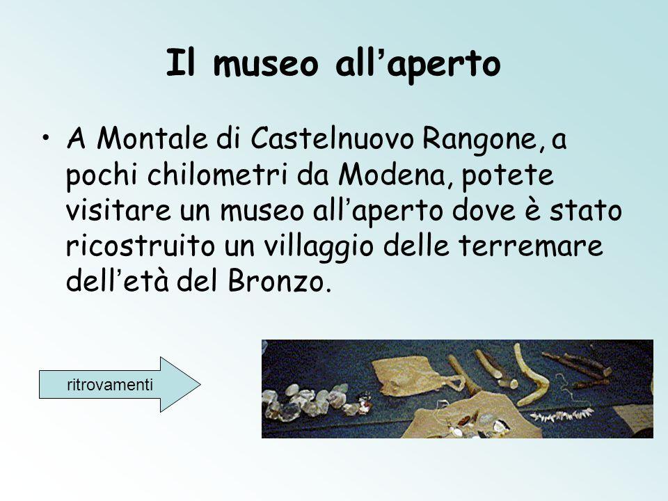 Il museo all'aperto A Montale di Castelnuovo Rangone, a pochi chilometri da Modena, potete visitare un museo all ' aperto dove è stato ricostruito un villaggio delle terremare dell ' età del Bronzo.