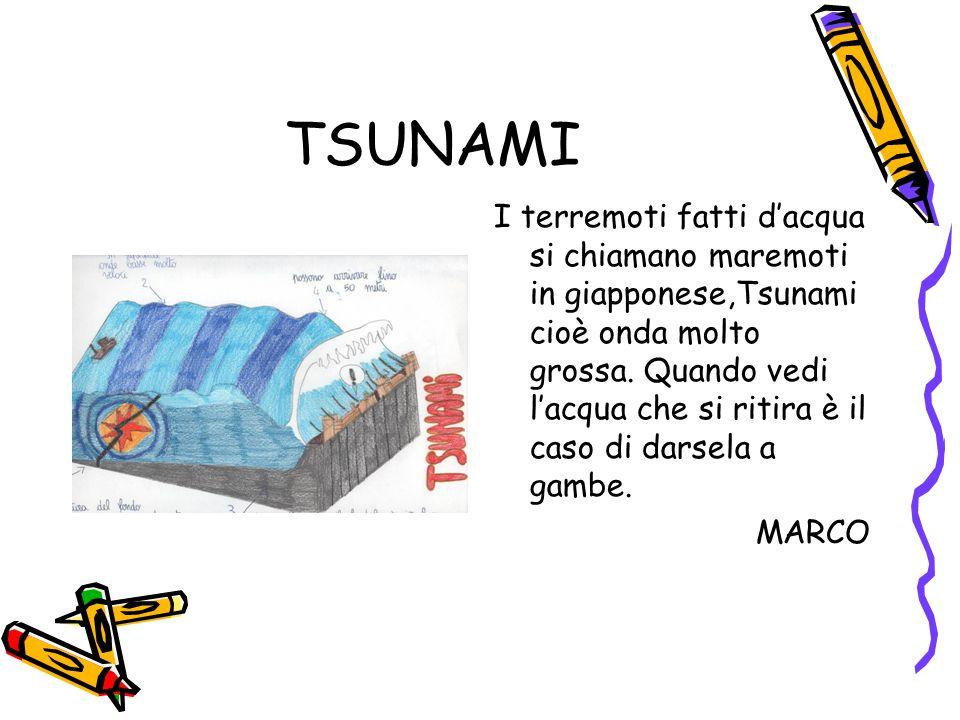 TSUNAMI I terremoti fatti d'acqua si chiamano maremoti in giapponese,Tsunami cioè onda molto grossa. Quando vedi l'acqua che si ritira è il caso di da