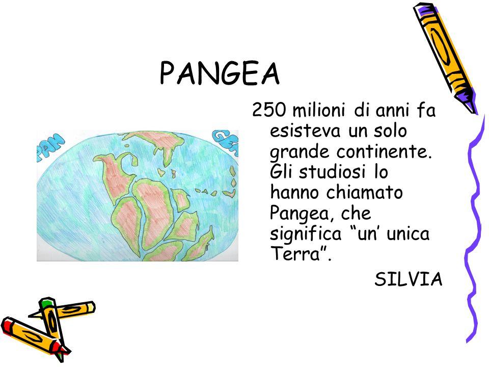 """PANGEA 250 milioni di anni fa esisteva un solo grande continente. Gli studiosi lo hanno chiamato Pangea, che significa """"un' unica Terra"""". SILVIA"""