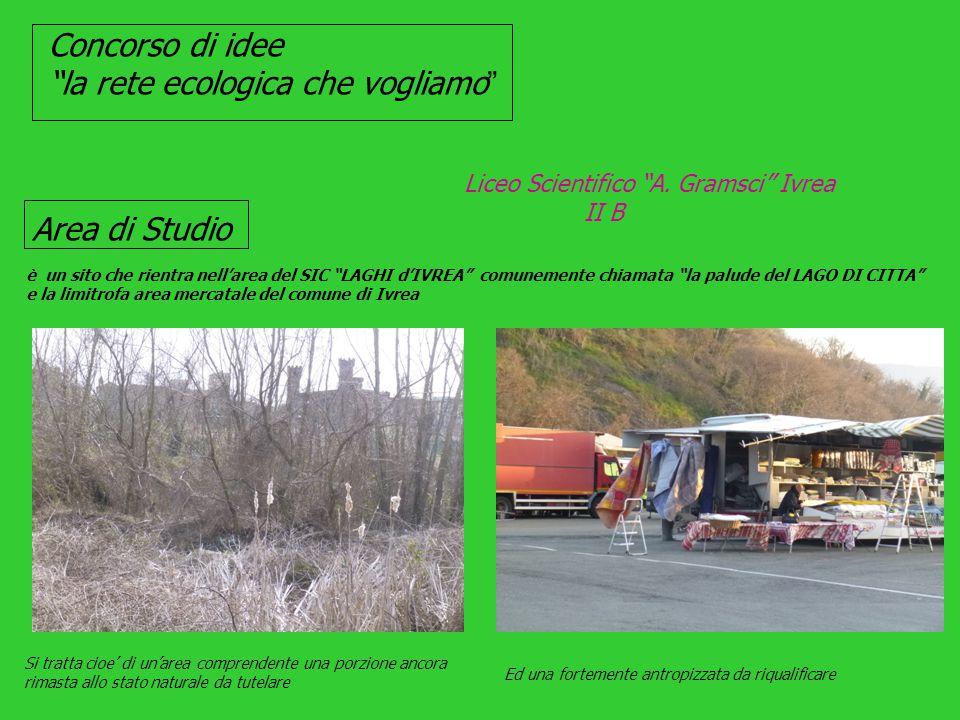 Concorso di idee la rete ecologica che vogliamo Liceo Scientifico A.