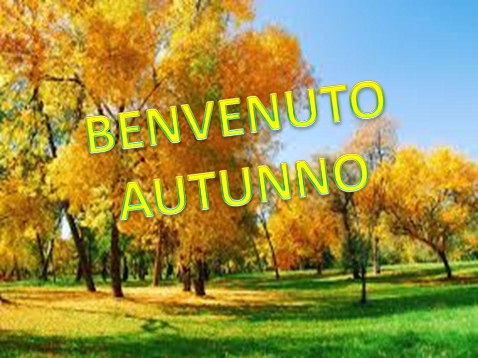 Questo evento è stato pensato per salutare l'estate e dare il benvenuto all'autunno, e per far conoscere l'intero territorio del Cilento.