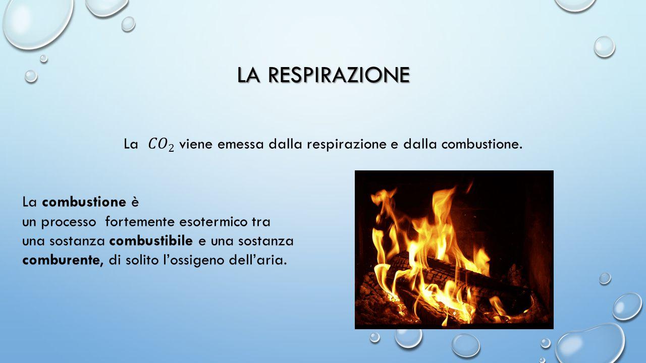 LA RESPIRAZIONE La combustione è un processo fortemente esotermico tra una sostanza combustibile e una sostanza comburente, di solito l'ossigeno dell'