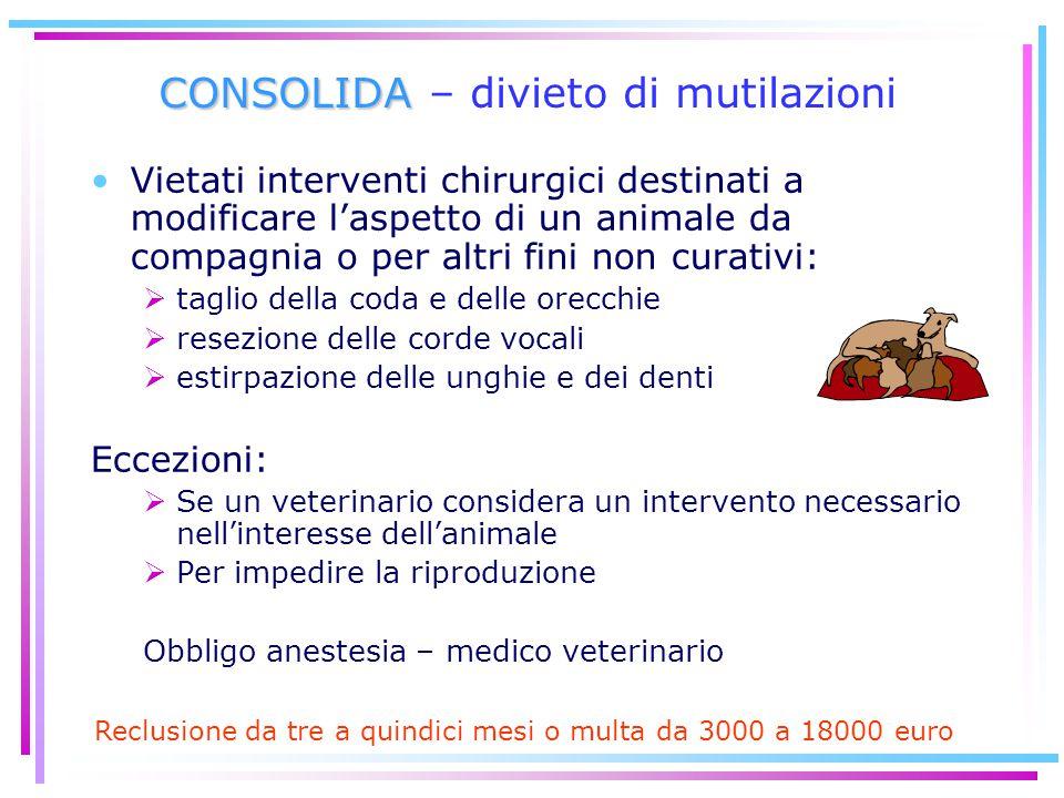 CONSOLIDA CONSOLIDA – divieto di mutilazioni Vietati interventi chirurgici destinati a modificare l'aspetto di un animale da compagnia o per altri fin