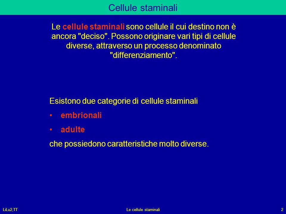 LiLu2,TTLe cellule staminali2 Cellule staminali Le cellule staminali sono cellule il cui destino non è ancora