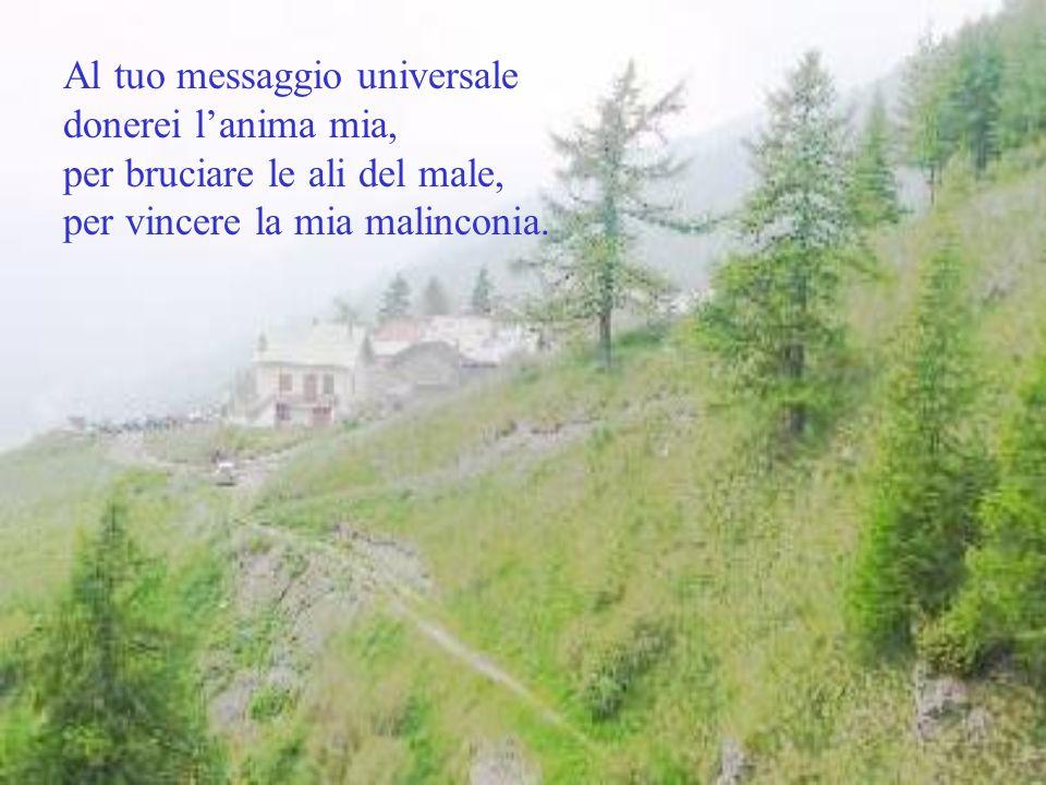 Al tuo messaggio universale donerei l'anima mia, per bruciare le ali del male, per vincere la mia malinconia.