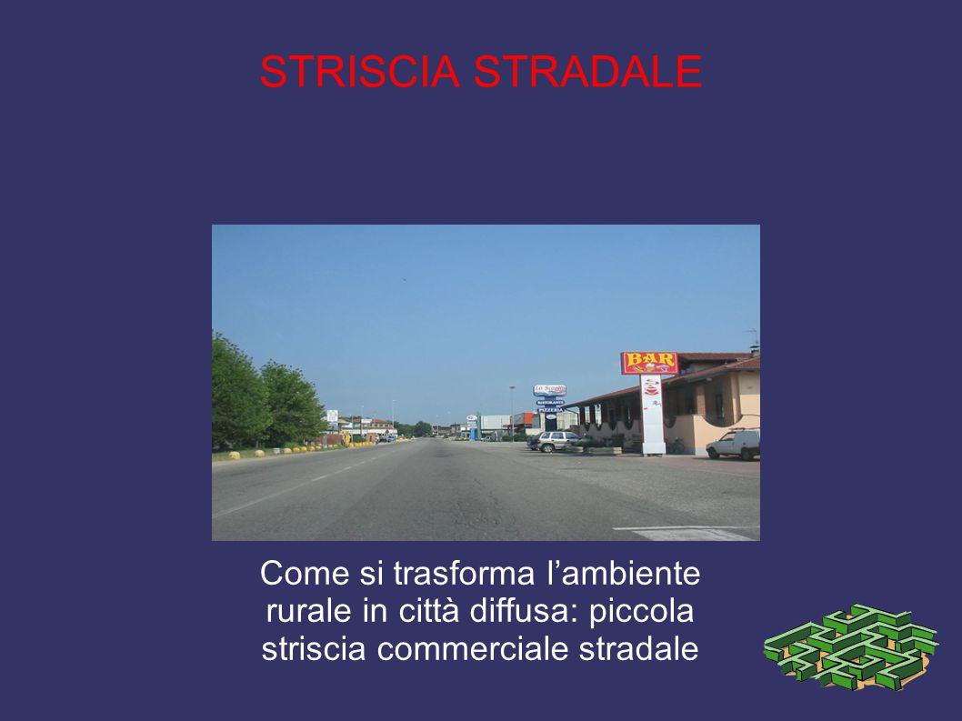STRISCIA STRADALE Come si trasforma l'ambiente rurale in città diffusa: piccola striscia commerciale stradale