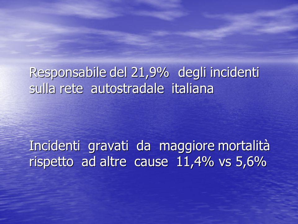 Responsabile del 21,9% degli incidenti sulla rete autostradale italiana Incidenti gravati da maggiore mortalità rispetto ad altre cause 11,4% vs 5,6%