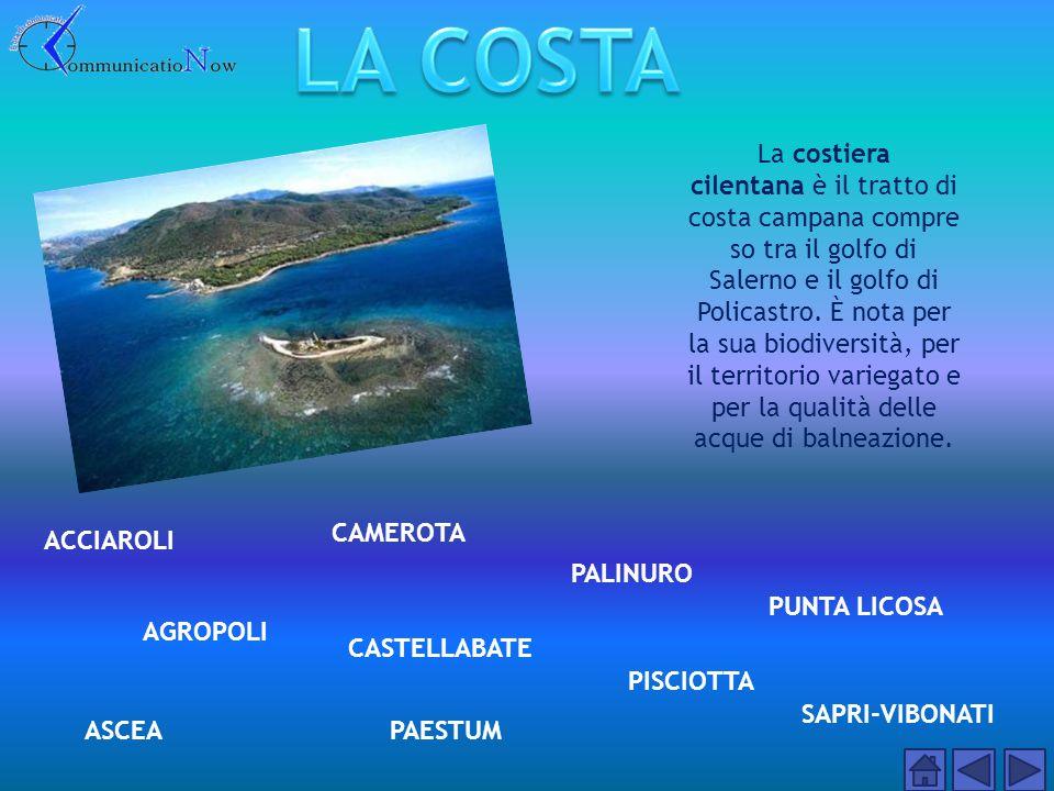Sono diversi anni che il paese ottiene le 5 vele di Legambiente e la Bandiera Blu per le spiagge, insieme con la limitrofa frazione di Pioppi.