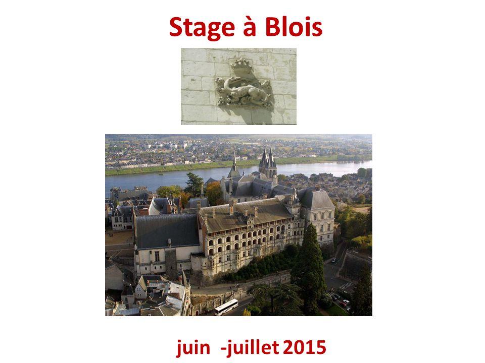 Stage à Blois juin -juillet 2015