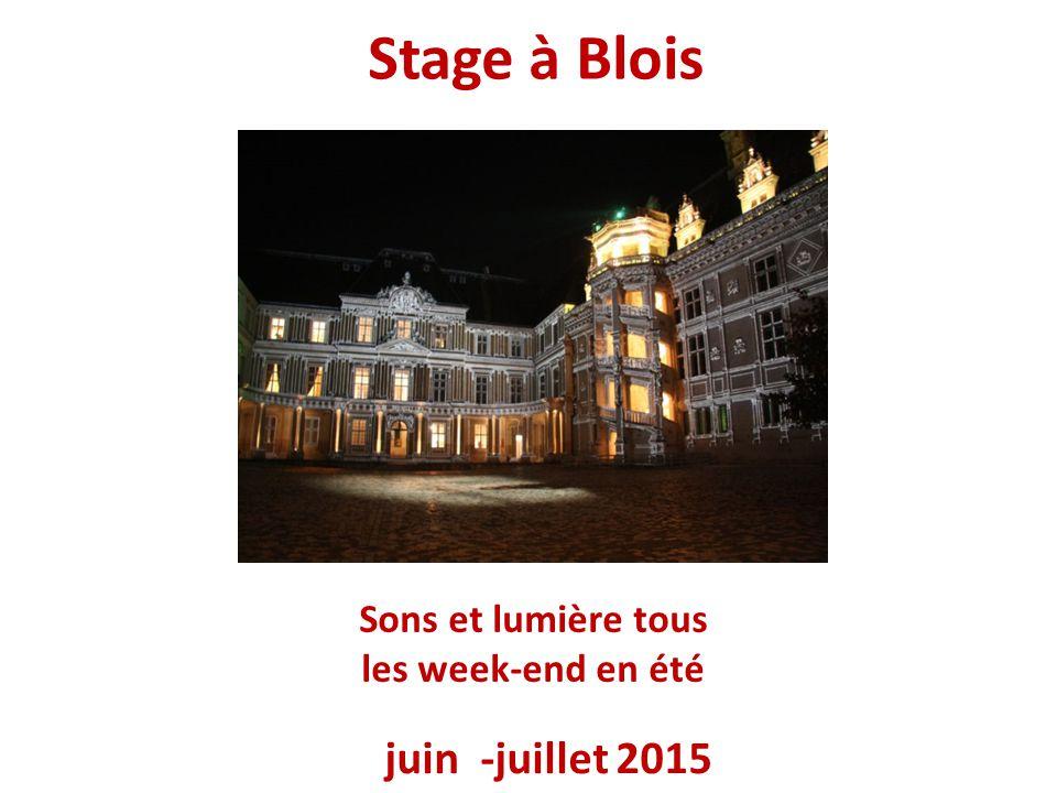 Stage à Blois juin -juillet 2015 Sons et lumière tous les week-end en été