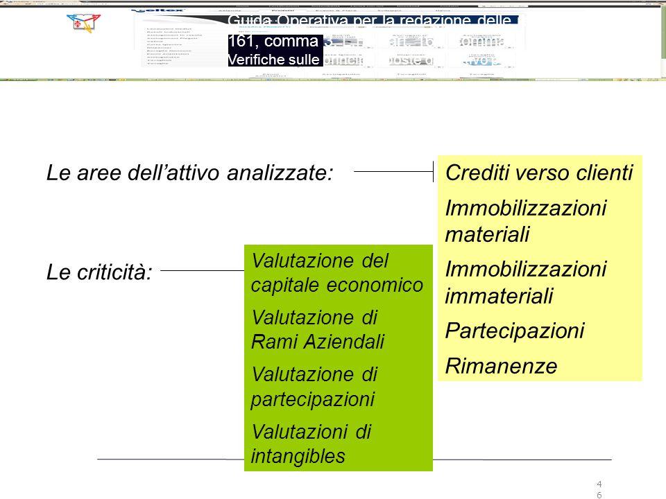Le aree dell'attivo analizzate:Crediti verso clienti Immobilizzazioni materiali Immobilizzazioni immateriali Partecipazioni Rimanenze Le criticità: Va