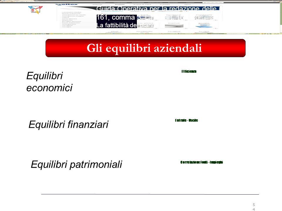 Gli equilibri aziendali Equilibri economici Efficienza Equilibri finanziari Entrate - Uscite Equilibri patrimoniali Correlazione Fonti - Impieghi 54 G