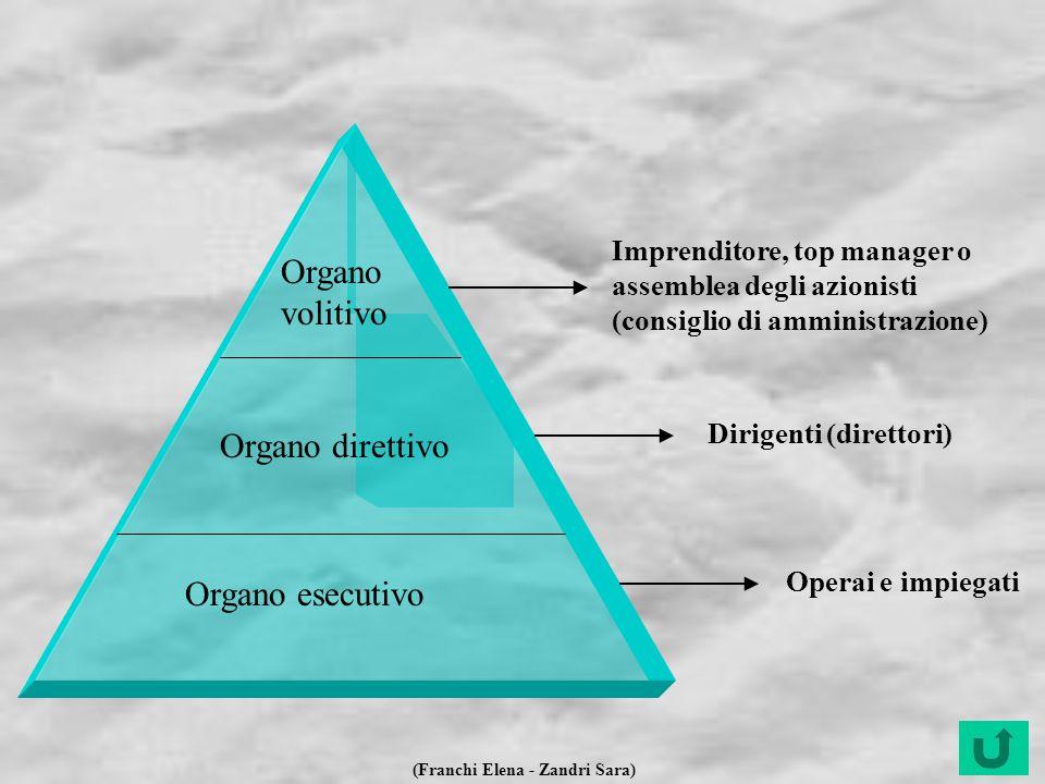 (Franchi Elena - Zandri Sara) Organo volitivo Imprenditore, top manager o assemblea degli azionisti (consiglio di amministrazione) Organo direttivo Di