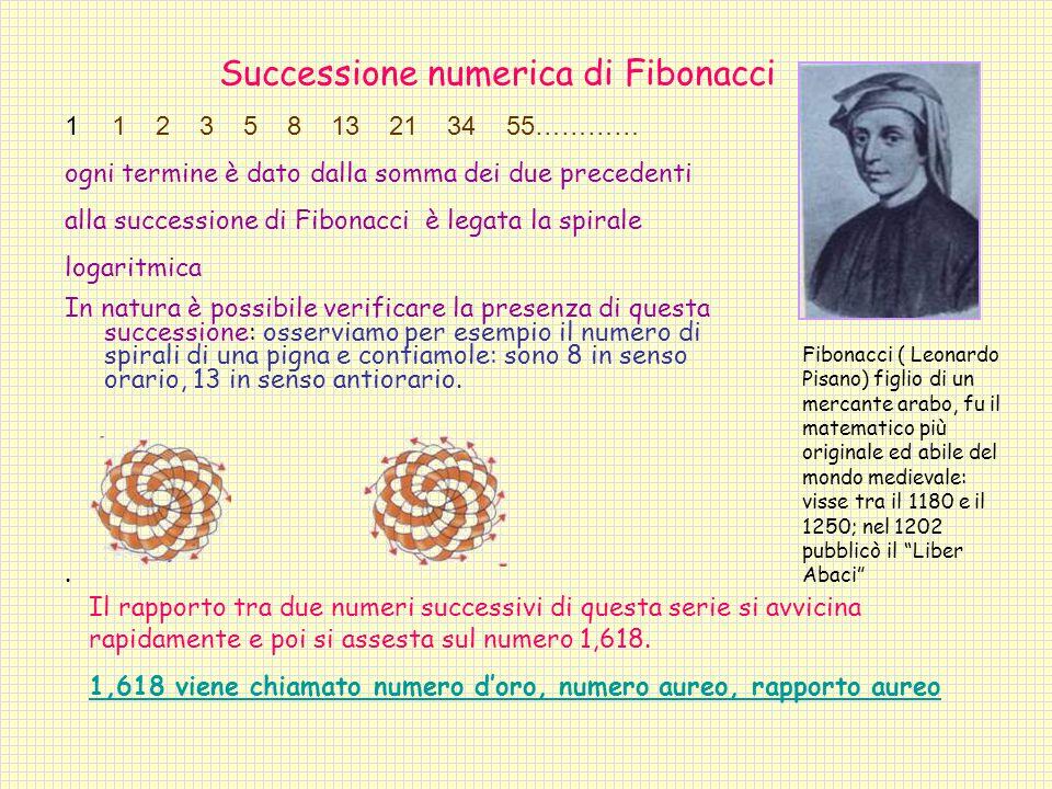 Successione numerica di Fibonacci.