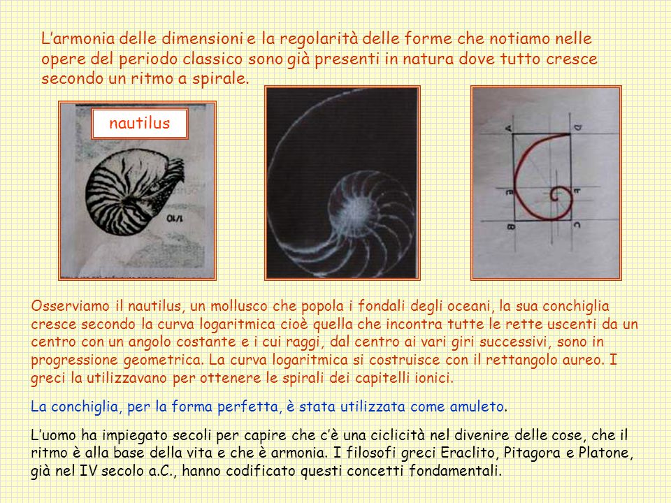 L'armonia delle dimensioni e la regolarità delle forme che notiamo nelle opere del periodo classico sono già presenti in natura dove tutto cresce secondo un ritmo a spirale.