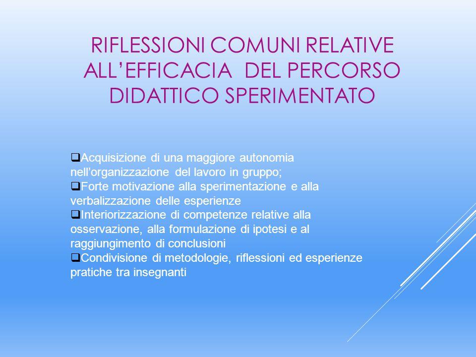 RIFLESSIONI COMUNI RELATIVE ALL'EFFICACIA DEL PERCORSO DIDATTICO SPERIMENTATO  Acquisizione di una maggiore autonomia nell'organizzazione del lavoro