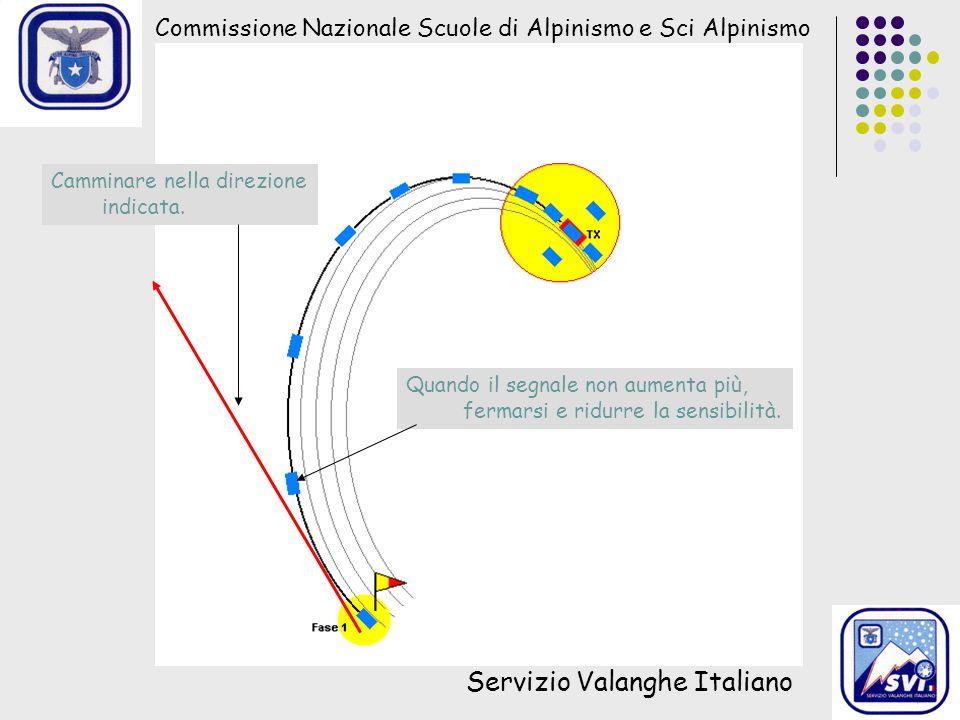 Commissione Nazionale Scuole di Alpinismo e Sci Alpinismo Servizio Valanghe Italiano Camminare nella direzione indicata. Quando il segnale non aumenta