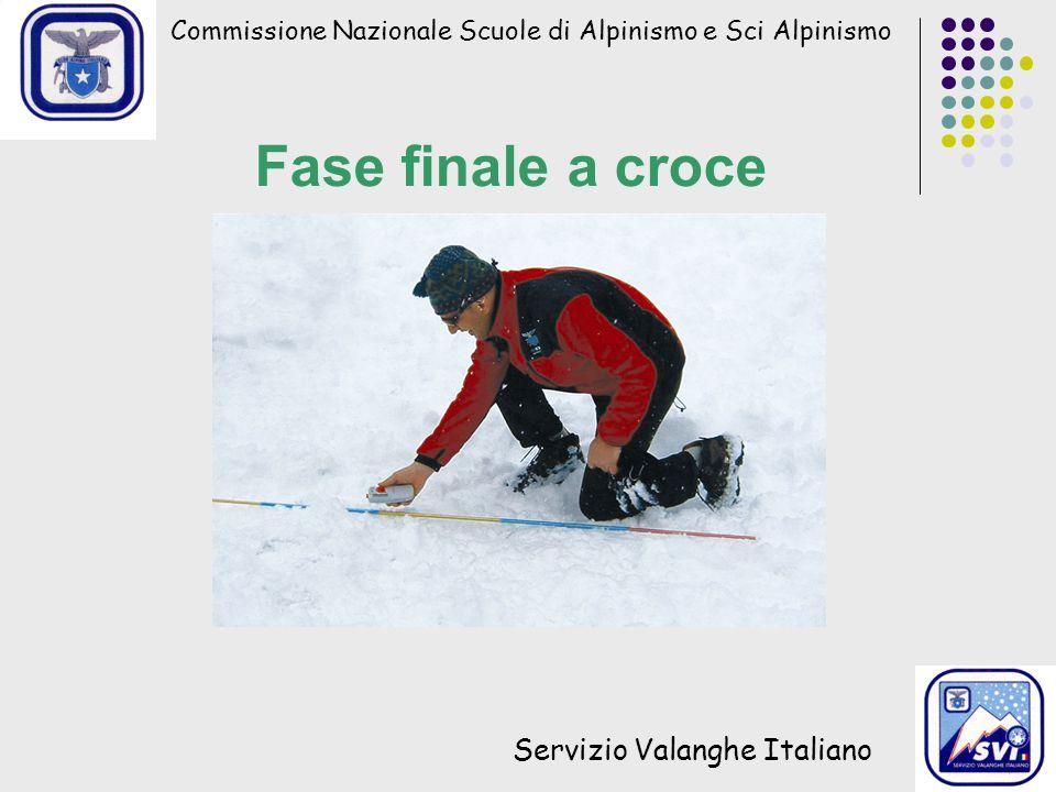 Commissione Nazionale Scuole di Alpinismo e Sci Alpinismo Servizio Valanghe Italiano Fase finale a croce