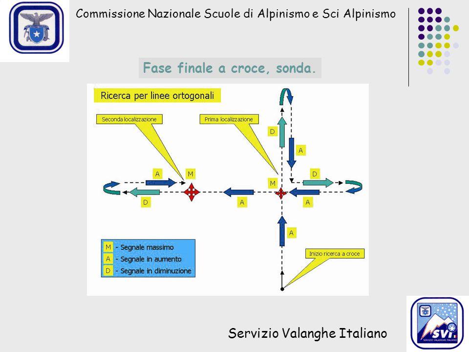 Commissione Nazionale Scuole di Alpinismo e Sci Alpinismo Servizio Valanghe Italiano Fase finale a croce, sonda.
