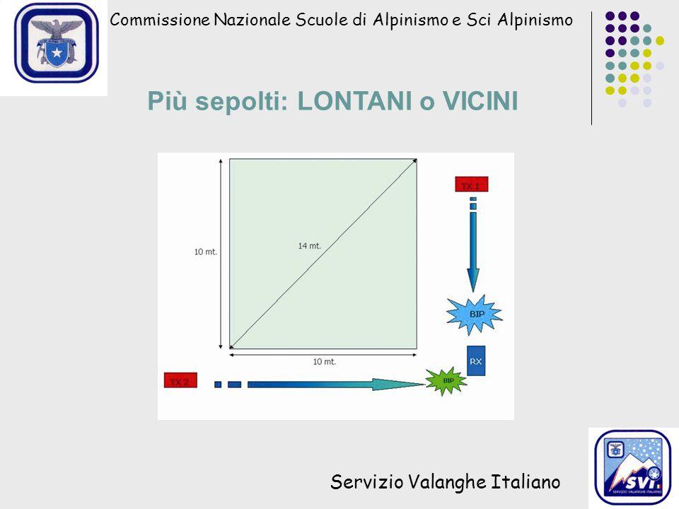 Commissione Nazionale Scuole di Alpinismo e Sci Alpinismo Servizio Valanghe Italiano Più sepolti: LONTANI o VICINI