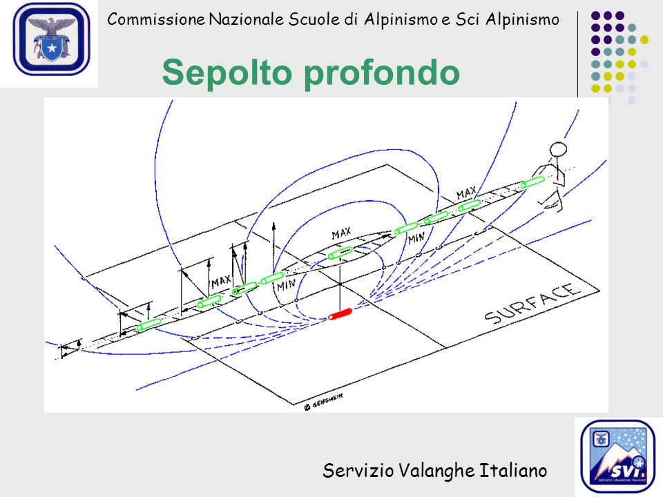 Commissione Nazionale Scuole di Alpinismo e Sci Alpinismo Servizio Valanghe Italiano Sepolto profondo