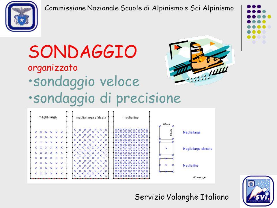 Commissione Nazionale Scuole di Alpinismo e Sci Alpinismo Servizio Valanghe Italiano SONDAGGIO organizzato sondaggio veloce sondaggio di precisione