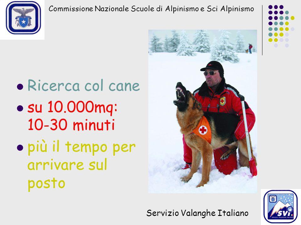 Commissione Nazionale Scuole di Alpinismo e Sci Alpinismo Servizio Valanghe Italiano Ricerca col cane su 10.000mq: 10-30 minuti più il tempo per arrivare sul posto
