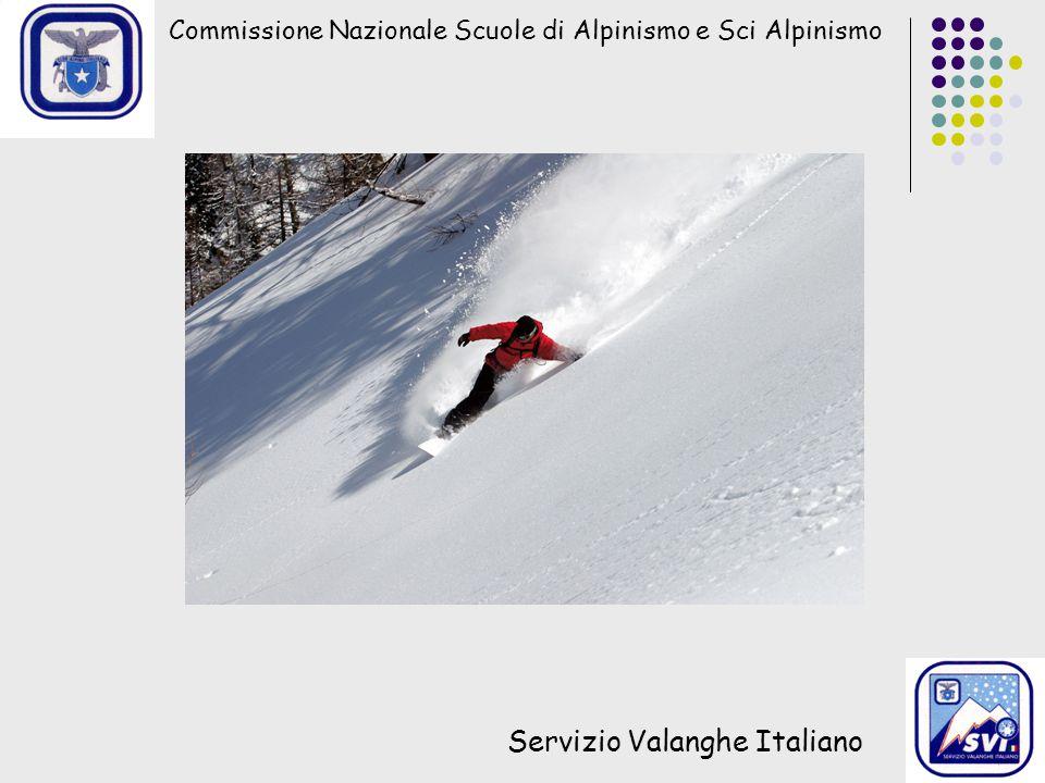 Commissione Nazionale Scuole di Alpinismo e Sci Alpinismo Servizio Valanghe Italiano