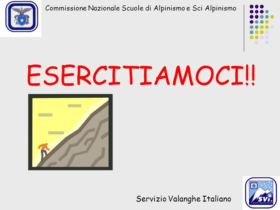 Commissione Nazionale Scuole di Alpinismo e Sci Alpinismo Servizio Valanghe Italiano ESERCITIAMOCI!!