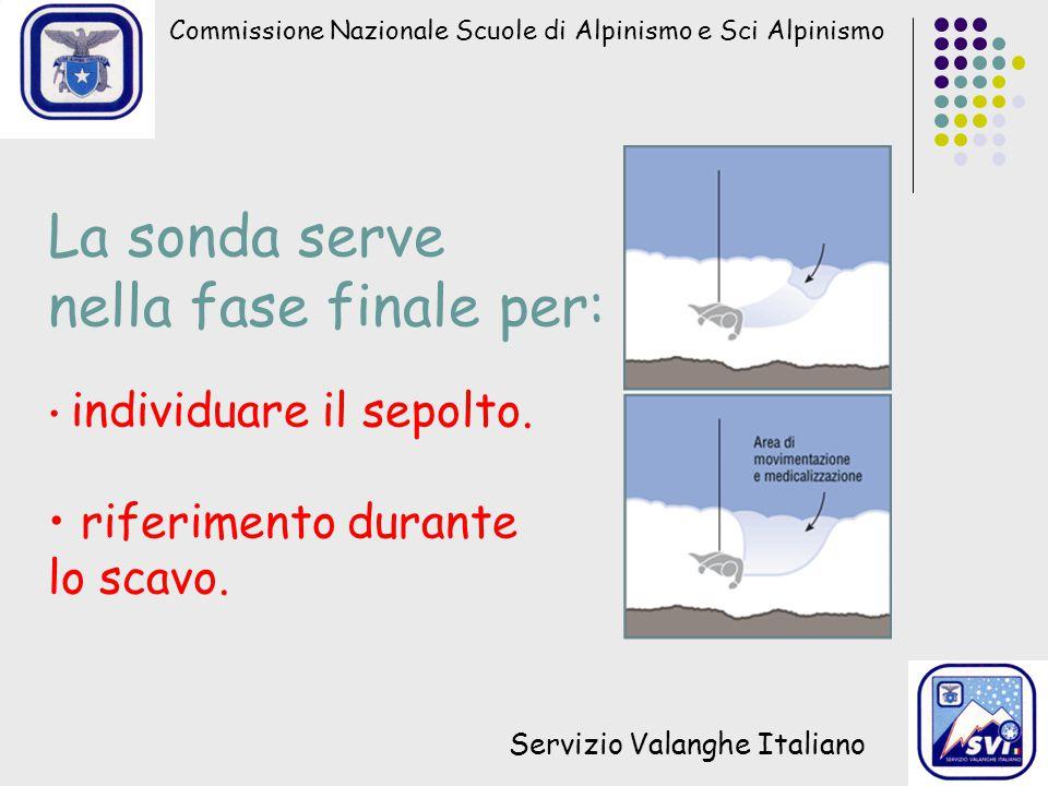 Commissione Nazionale Scuole di Alpinismo e Sci Alpinismo Servizio Valanghe Italiano La sonda serve nella fase finale per: individuare il sepolto. rif