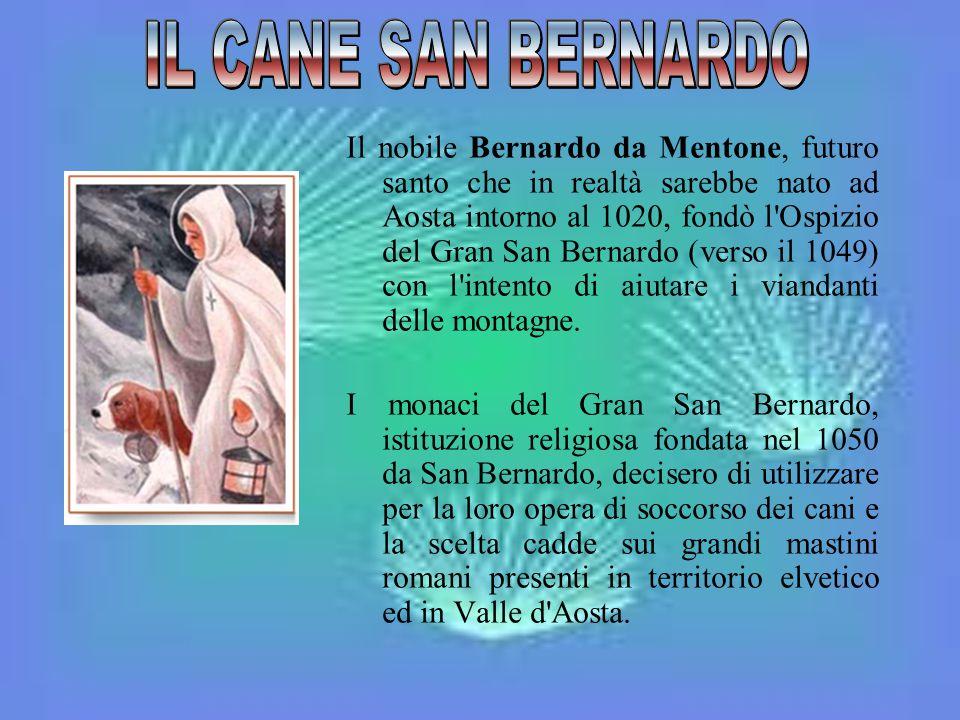 Il nobile Bernardo da Mentone, futuro santo che in realtà sarebbe nato ad Aosta intorno al 1020, fondò l'Ospizio del Gran San Bernardo (verso il 1049)