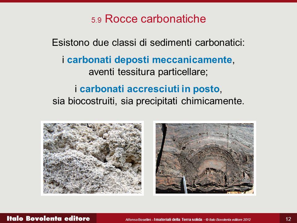 Alfonso Bosellini – I materiali della Terra solida - © Italo Bovolenta editore 2012 12 5.9 Rocce carbonatiche Esistono due classi di sedimenti carbonatici: i carbonati deposti meccanicamente, aventi tessitura particellare; i carbonati accresciuti in posto, sia biocostruiti, sia precipitati chimicamente.