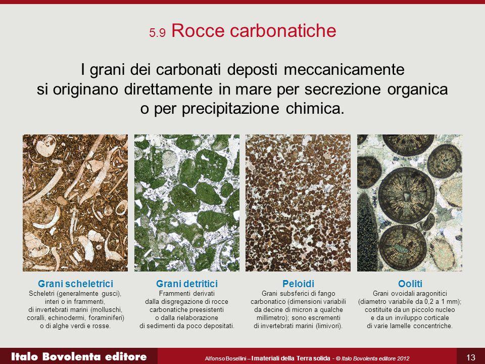 Alfonso Bosellini – I materiali della Terra solida - © Italo Bovolenta editore 2012 13 5.9 Rocce carbonatiche I grani dei carbonati deposti meccanicamente si originano direttamente in mare per secrezione organica o per precipitazione chimica.