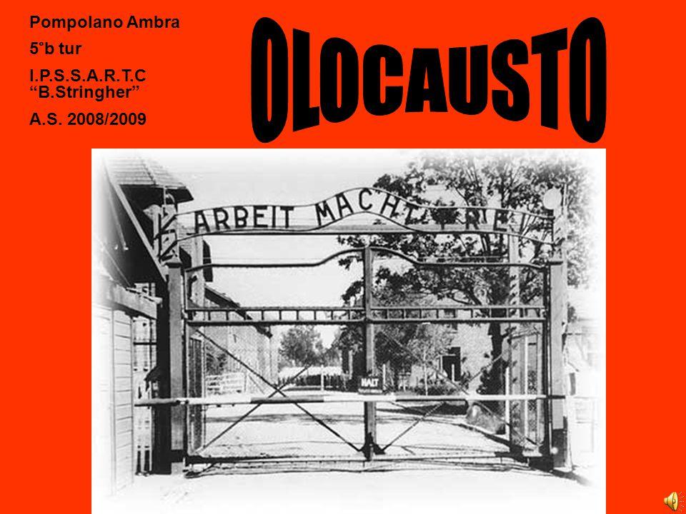 Ebreo Prigioniero di battaglione penale Recidivo Normale Asociali Rom e Sinti Omosessuali Testimoni di Geova ImmigrantiCriminali Prigionieri politici
