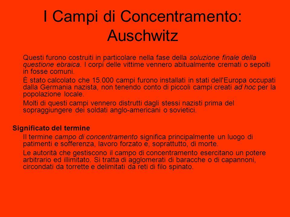 I Campi di Concentramento: Auschwitz Questi furono costruiti in particolare nella fase della soluzione finale della questione ebraica. I corpi delle v