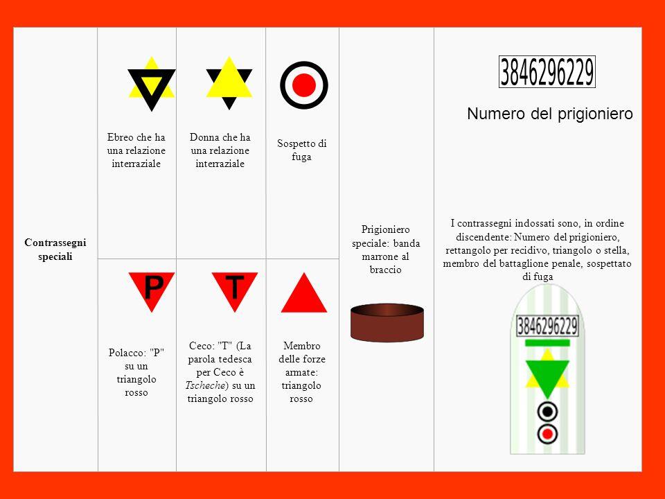 Membro delle forze armate: triangolo rosso Ceco: