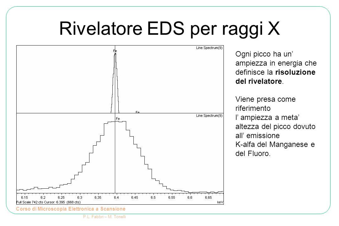 Rivelatore EDS per raggi X Corso di Microscopia Elettronica a Scansione P.L. Fabbri – M. Tonelli Ogni picco ha un' ampiezza in energia che definisce l