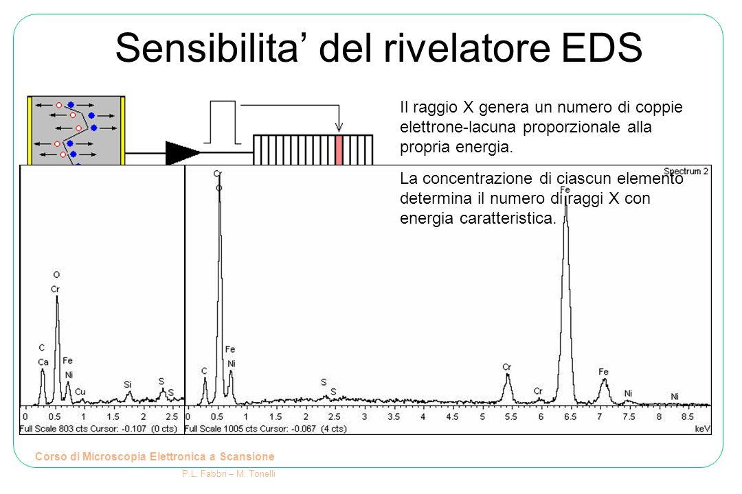 Sensibilita' del rivelatore EDS Corso di Microscopia Elettronica a Scansione P.L. Fabbri – M. Tonelli Il raggio X genera un numero di coppie elettrone