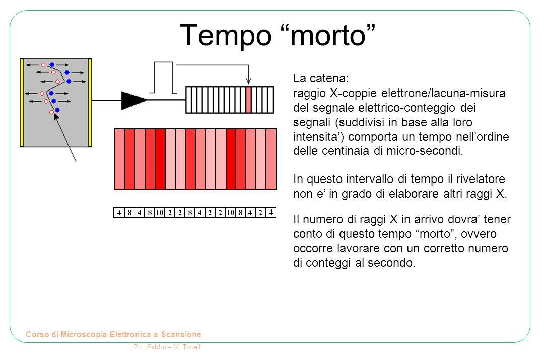 """Tempo """"morto"""" Corso di Microscopia Elettronica a Scansione P.L. Fabbri – M. Tonelli La catena: raggio X-coppie elettrone/lacuna-misura del segnale ele"""