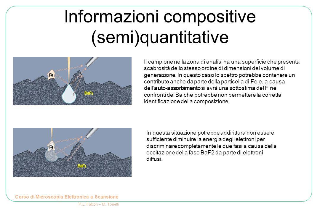 Informazioni compositive (semi)quantitative Corso di Microscopia Elettronica a Scansione P.L. Fabbri – M. Tonelli Il campione nella zona di analisi ha