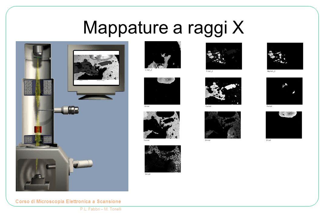 Mappature a raggi X Corso di Microscopia Elettronica a Scansione P.L. Fabbri – M. Tonelli