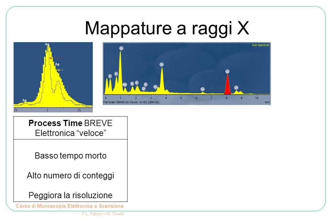 """Mappature a raggi X Corso di Microscopia Elettronica a Scansione P.L. Fabbri – M. Tonelli Process Time BREVE Elettronica """"veloce"""" Basso tempo morto Al"""