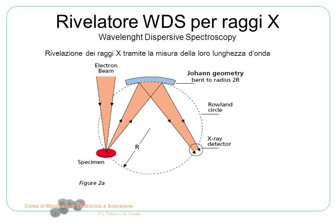 Corso di Microscopia Elettronica a Scansione P.L. Fabbri – M. Tonelli Rivelazione dei raggi X tramite la misura della loro lunghezza d'onda Rivelatore