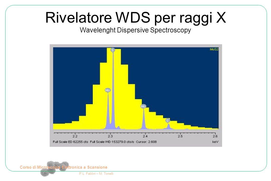 Corso di Microscopia Elettronica a Scansione P.L. Fabbri – M. Tonelli Rivelatore WDS per raggi X Wavelenght Dispersive Spectroscopy